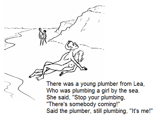 A plumber from Lea
